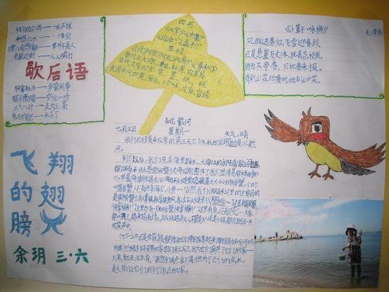 四年级暑假语文手抄报内容