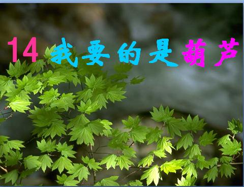 人教版二年级语文上册课件:我要的是葫芦课件(9)