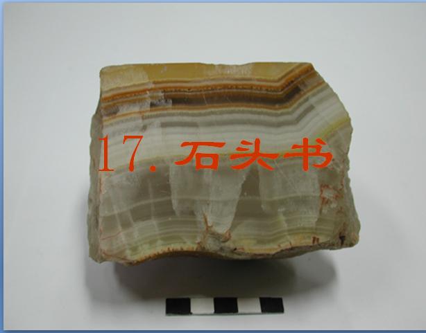 石头书ppt课件(1)