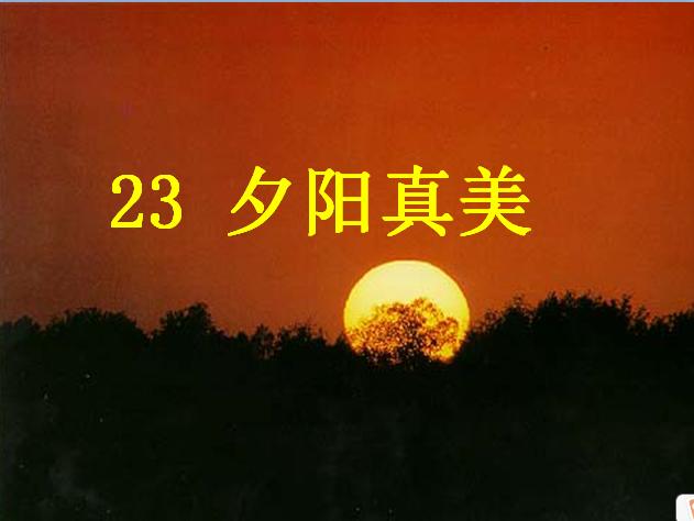 苏教版二年级语文上册课件:夕阳真美ppt课件(4)