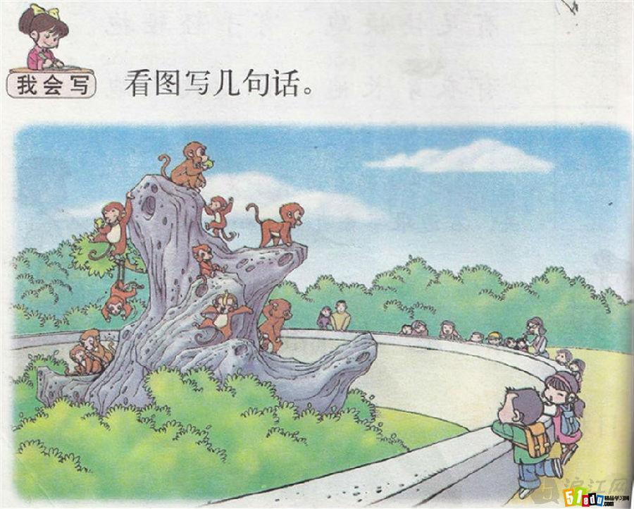 看图写话大全:猴子的世界