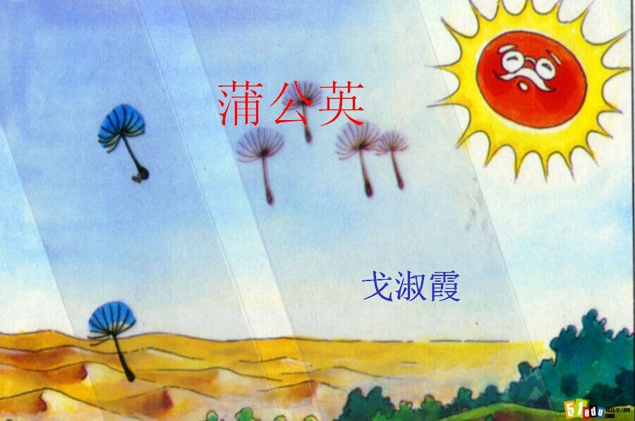 苏教版三年级语文上册课件:蒲公英课件(2)