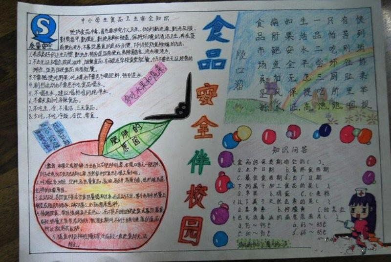 小学生食品安全手总结数学抄报四小学年级图片