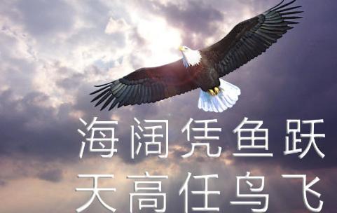 2016年浙江富阳中考政策改革(大全)_浙江中考