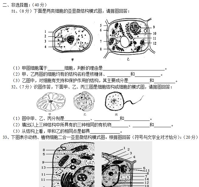 胞的基本结构试题