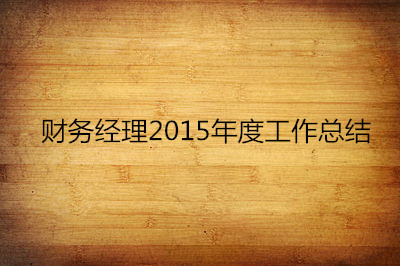 2016财务工作总结范文6