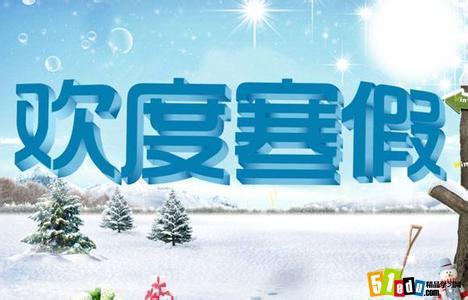 2016高中生寒假社会实践活动报告范文
