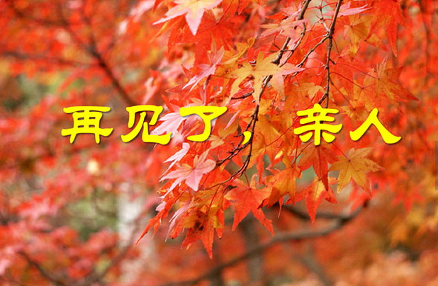 手工制作秋天落叶的大树