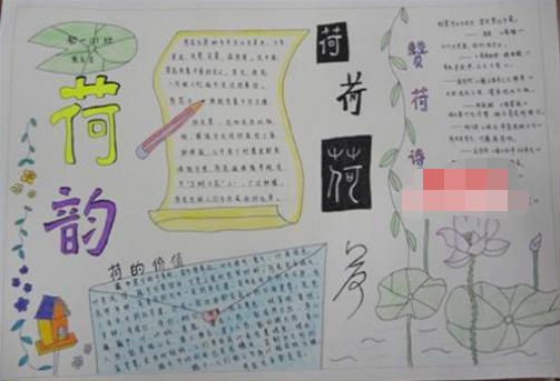 关于银杏树的手抄报_手抄报银杏树展示_康之园