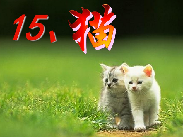 四年级上册�y���.i_2016-2017学年四年级上册语文《猫》课件