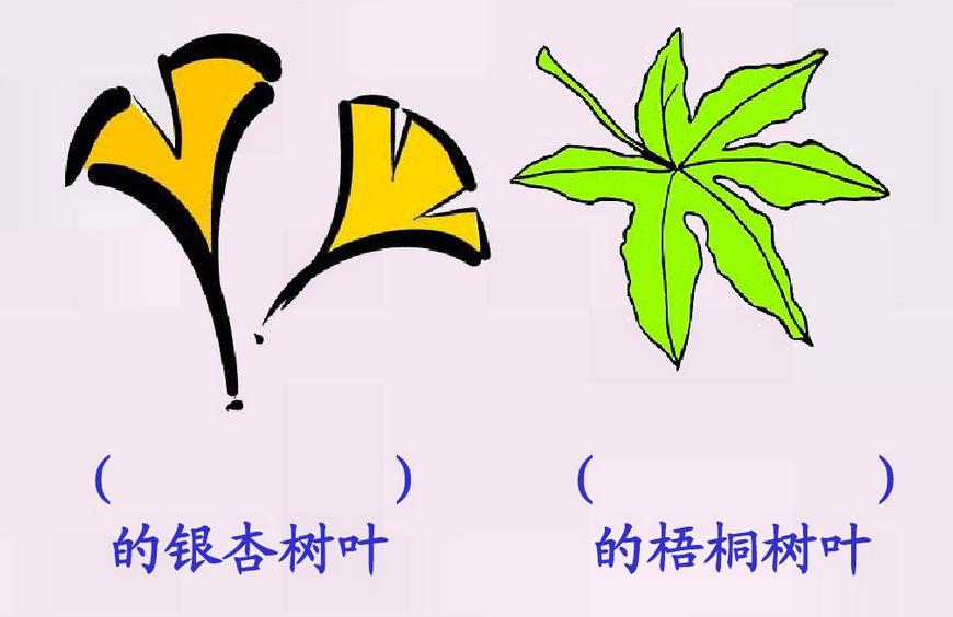 2016年秋季二年级语文 蓝色的树叶 课件 上册