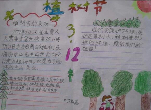 [植树节手抄报图片大全]3.12植树节手抄报设计:植树节