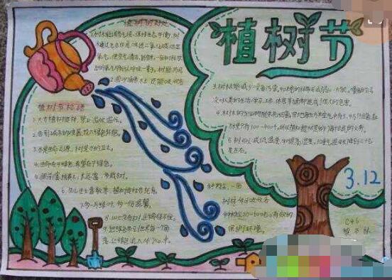 【植树节手抄报图片大全】小学生植树节手抄报图片:3.12植树节