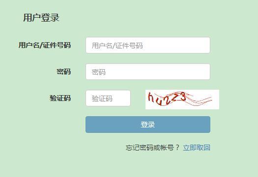 个人-银行中级职业资格考试准考证打印